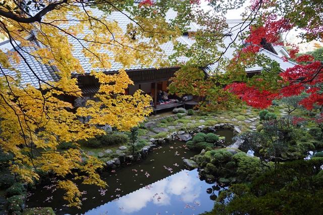 驚愕!!當麻寺西南院の素晴らしい紅葉と庭園、奈良の秋素晴らしい美しさに逢う旅_d0181492_2214486.jpg