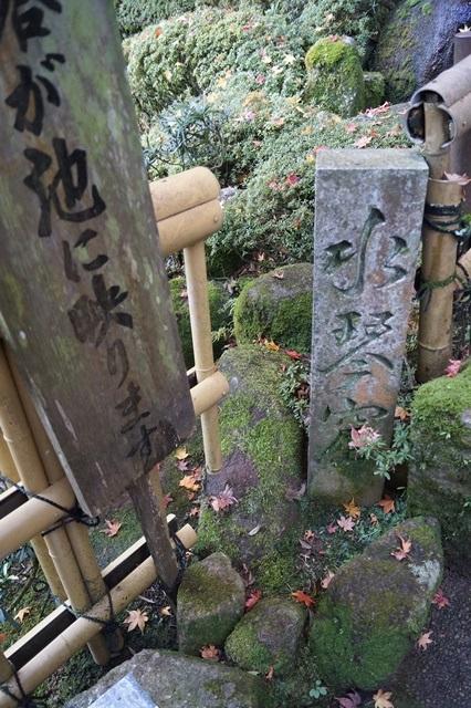 驚愕!!當麻寺西南院の素晴らしい紅葉と庭園、奈良の秋素晴らしい美しさに逢う旅_d0181492_2222760.jpg