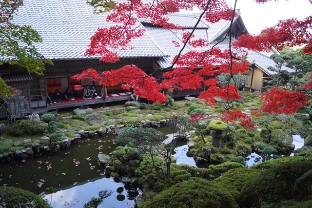 驚愕!!當麻寺西南院の素晴らしい紅葉と庭園、奈良の秋素晴らしい美しさに逢う旅_d0181492_222344.jpg