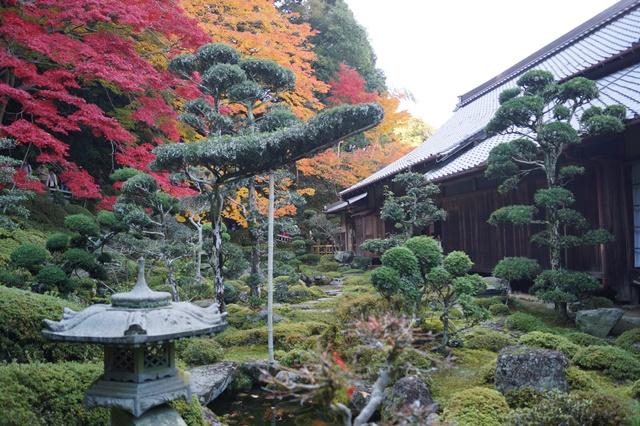 驚愕!!當麻寺西南院の素晴らしい紅葉と庭園、奈良の秋素晴らしい美しさに逢う旅_d0181492_2232214.jpg