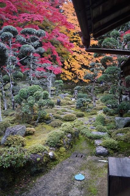 驚愕!!當麻寺西南院の素晴らしい紅葉と庭園、奈良の秋素晴らしい美しさに逢う旅_d0181492_223424.jpg