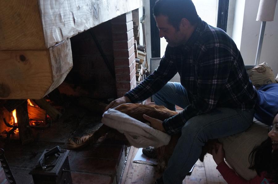 日曜日の午後は暖炉の前で_f0106597_203923.jpg