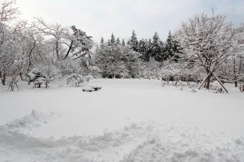 雪と温熱_e0054299_10354665.jpg