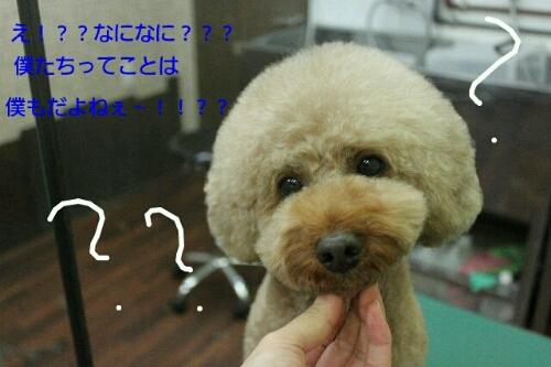 安室ちゃん_b0130018_12562983.jpg