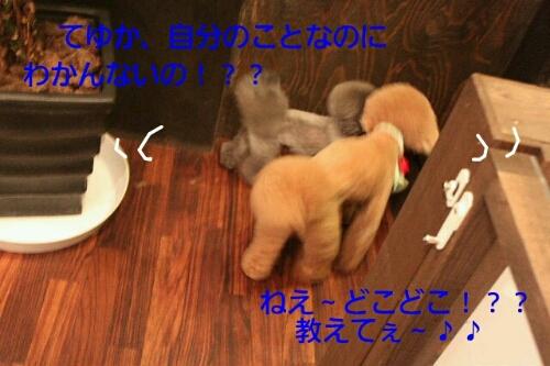 安室ちゃん_b0130018_12571624.jpg