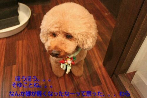 安室ちゃん_b0130018_12572832.jpg