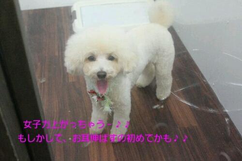 安室ちゃん_b0130018_13543189.jpg