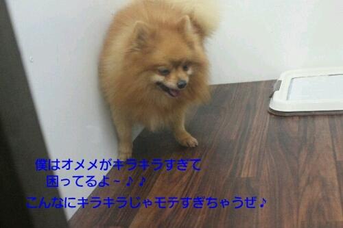 安室ちゃん_b0130018_1357148.jpg