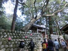 尾鷲研修ツアー最終日・熊野古道伊勢路_f0019247_12262131.jpg