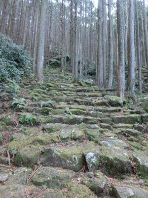 尾鷲研修ツアー最終日・熊野古道伊勢路_f0019247_138378.jpg