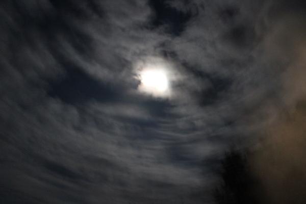 月の女神様とキラ☆_a0174458_154958.jpg