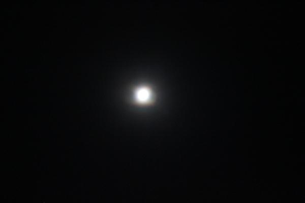 月の女神様とキラ☆_a0174458_182620.jpg