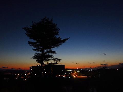 広島って、なんやなんや行路。_b0141773_015464.jpg