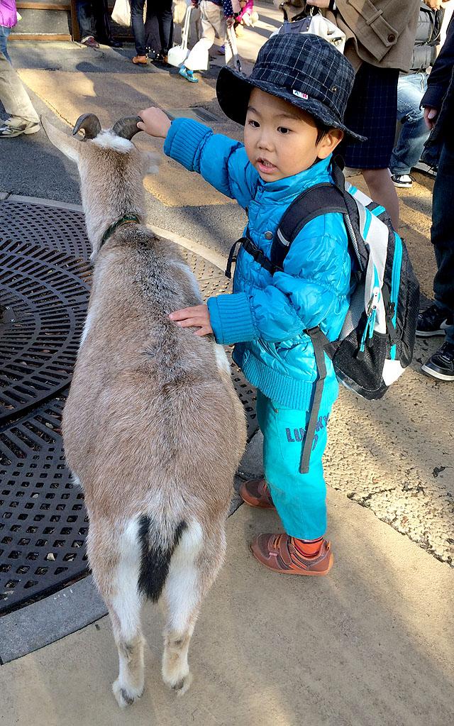 上野動物園_f0088873_9432823.jpg
