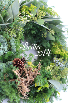 Christmas wreath 2014 by Briller_d0113182_14102140.jpg