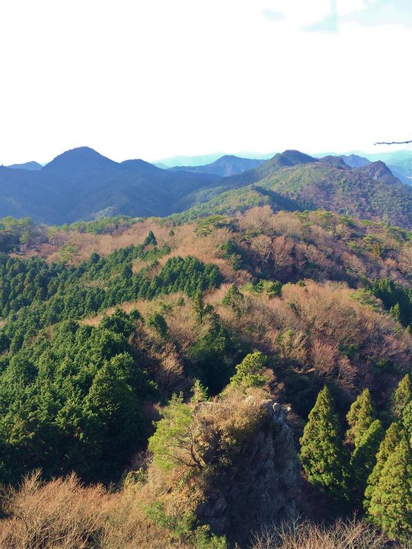 篠山三尾山 Mountain Running 2014/12/09_b0220886_202561.jpg