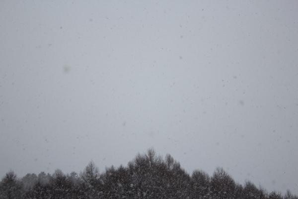 雪の降り方/ネットショップに商品アップしています。_f0227395_170419.jpg