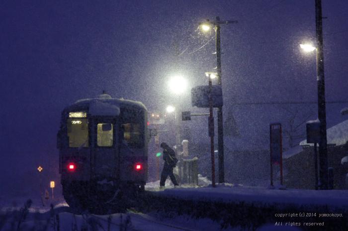 吹雪の朝に_d0309612_0514841.jpg