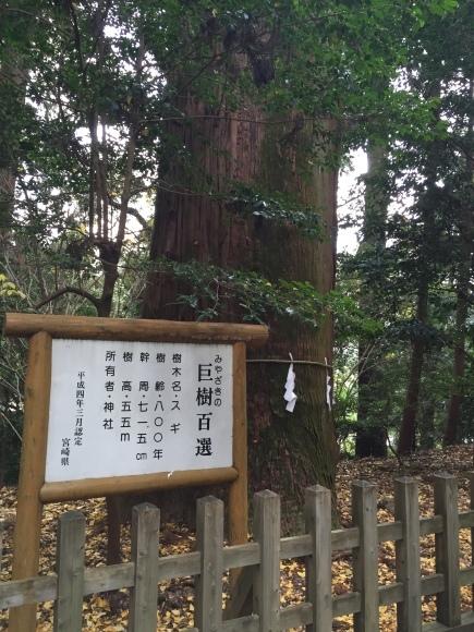 九州グリーン・ツーリズムシンポジウム 2014 in宮崎 _e0061225_16364935.jpg
