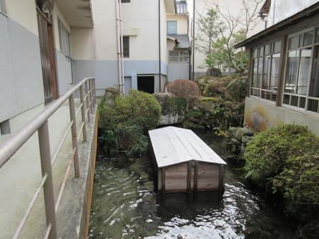 懐古館の池の鯉_b0204636_11312072.jpg