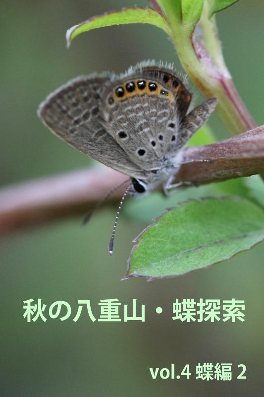 b0144049_14101977.jpg