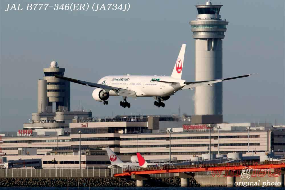 '14年 川崎・浮島公園レポート・・・JAL/JA734J_f0352866_23163925.jpg