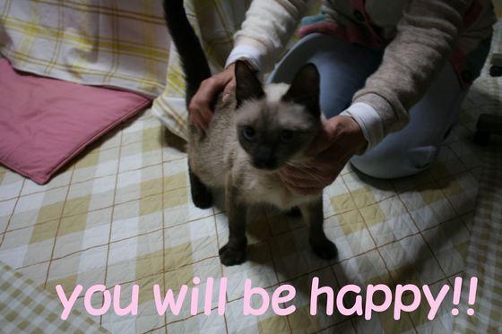 春菊ちゃん&舞ちゃん母子 新生活スタート!_f0242002_2238222.jpg