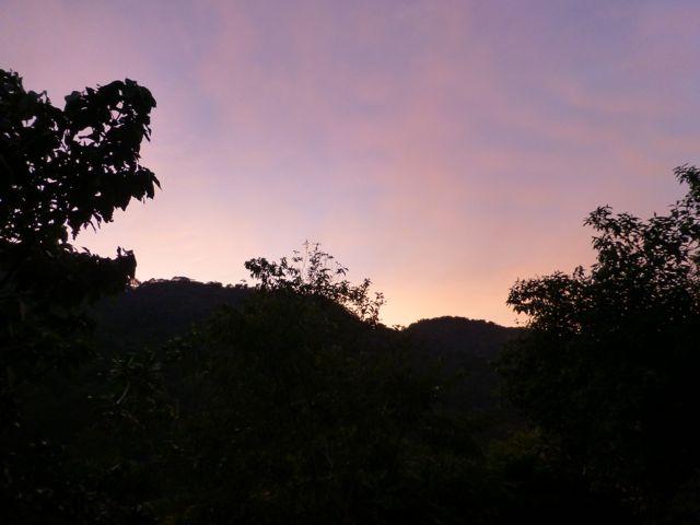 ウガンダ旅行記ー動物編1ークィーンエリザベス国立公園_f0096017_0444087.jpg