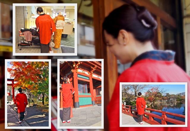 「着物でランチ・鎌倉散策」を。。。_f0205317_944102.jpg