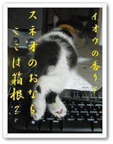 b0151748_12210328.jpg