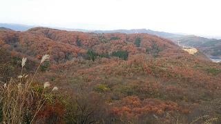 倶利伽羅県定公園周辺紅葉情報_c0208355_9172850.jpg