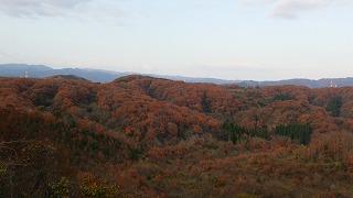 倶利伽羅県定公園周辺紅葉情報_c0208355_9173911.jpg