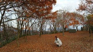 倶利伽羅県定公園周辺紅葉情報_c0208355_9205856.jpg