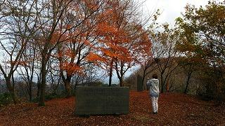 倶利伽羅県定公園周辺紅葉情報_c0208355_9211777.jpg