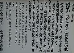 倶利伽羅県定公園周辺紅葉情報_c0208355_9351112.jpg