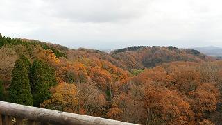 倶利伽羅県定公園周辺紅葉情報_c0208355_9391725.jpg