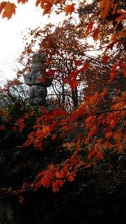 倶利伽羅県定公園周辺紅葉情報_c0208355_9403545.jpg