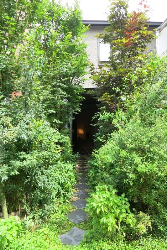 庭は劇的に変わるので楽しい_d0021969_10211821.jpg