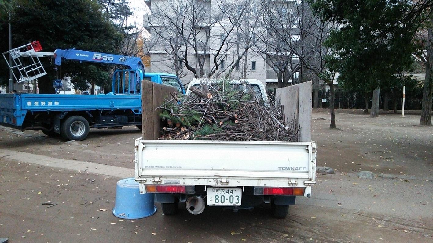 福岡中央公園の剪定_a0107574_17420238.jpg
