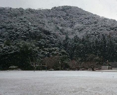 初雪 ☆ bento&晩ご飯♪_c0139375_1220365.jpg