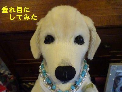 ルーシー天使2年生に_e0222588_17023260.jpg