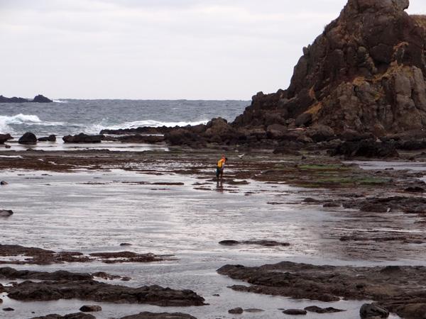 初冬の西海岸ドライブ 風合瀬の海岸清掃のことなど_a0136293_17395729.jpg