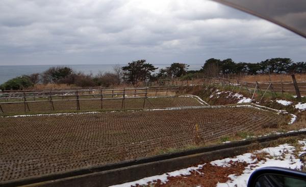 初冬の西海岸ドライブ 風合瀬の海岸清掃のことなど_a0136293_19213499.jpg
