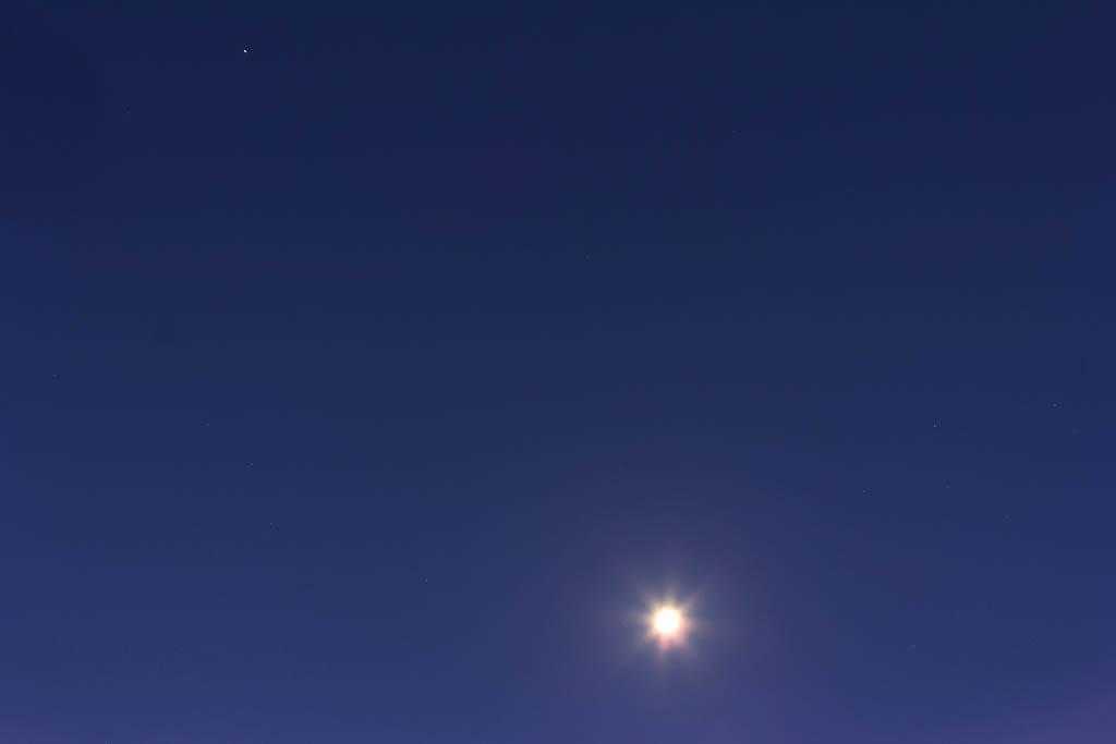 我が家で初氷/シメ・シメ・シメ/アリスイ/月・木星・プロキオン/_b0024798_10515237.jpg
