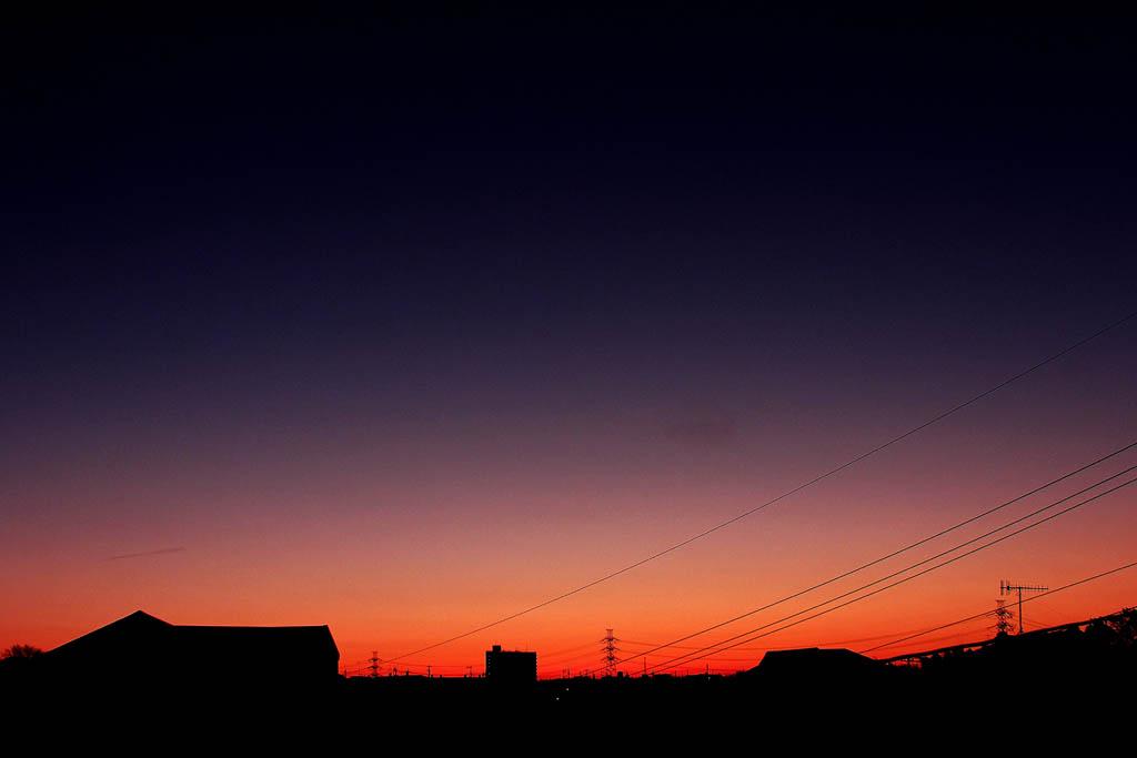 我が家で初氷/シメ・シメ・シメ/アリスイ/月・木星・プロキオン/_b0024798_10521625.jpg