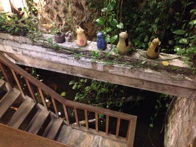 ☆猫カフェとパブロンの神隠し☆(台湾旅行1日目)_b0203925_13194812.jpg