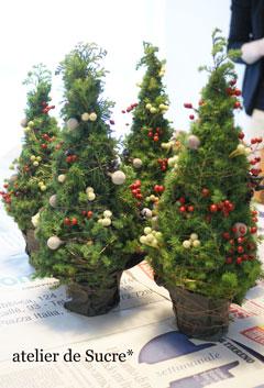 12月スペシャルイベント・ミニクリスマスツリー&ティーパーティー。_b0065587_14195339.jpg