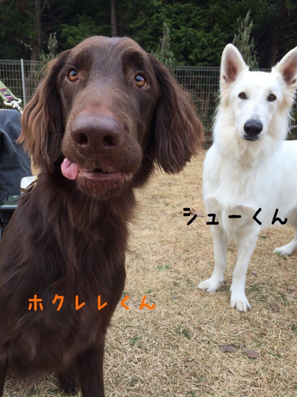 f0020595_01074301.jpg