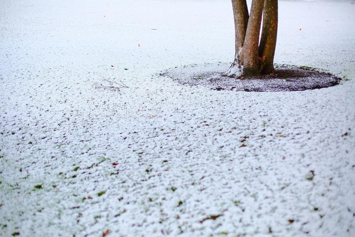今年もここに雪が降る_a0274805_13170873.jpg