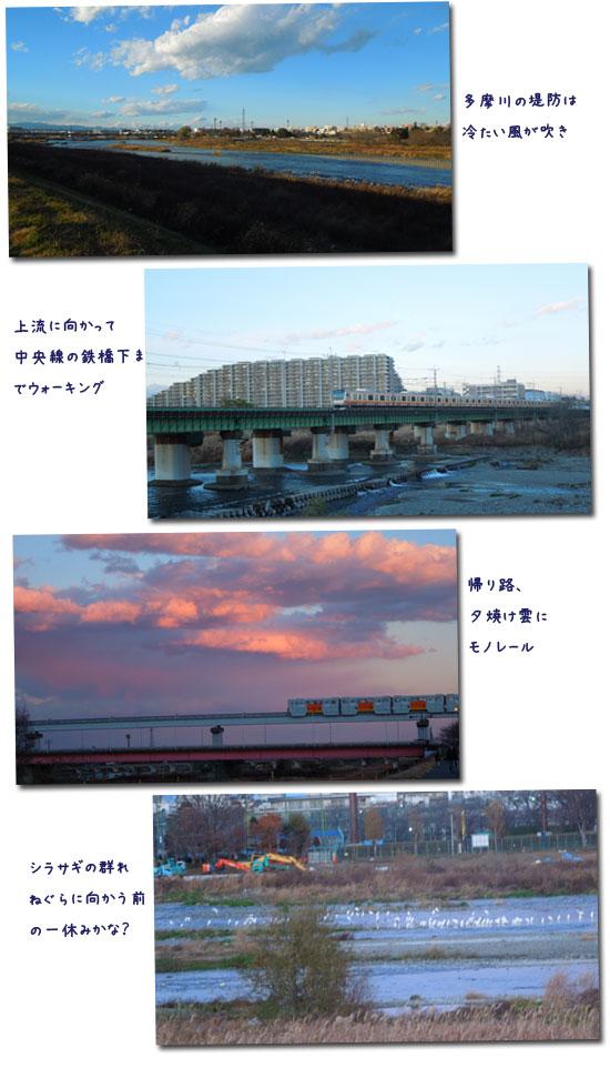 冷たい風_c0051105_23221211.jpg